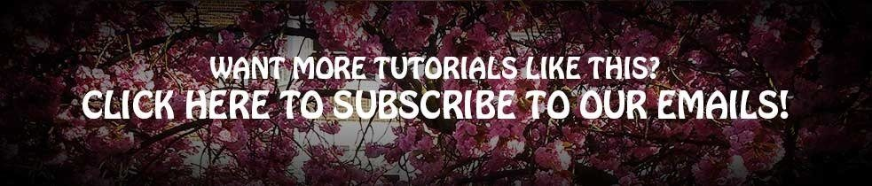 Email-subscrie-banner