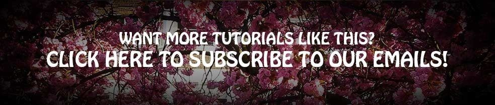Email-subscrie-banner_thumb1